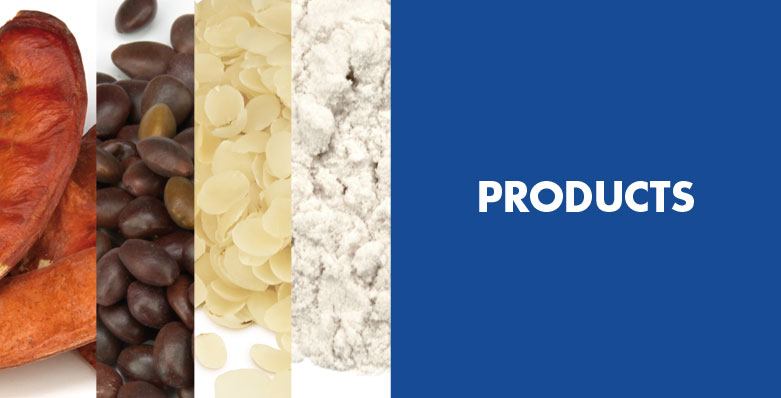 header_products